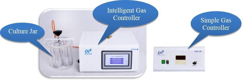 Intelligent Controller System for Anaerobic/Microaerophilic Jars