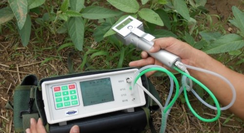 Portable photosynthetic instrument