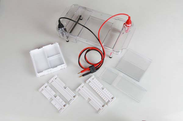 Image result for biotanon HE-120 Multifunctional Horizontal Gel Electrophoresis Cell
