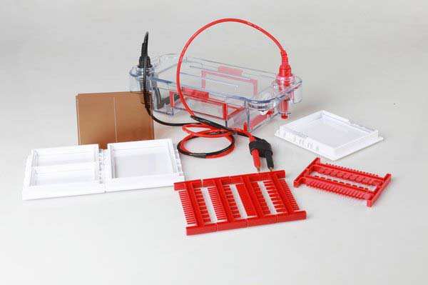 Image result for BIOTANON HE-90 Mini Horizontal Gel Electrophoresis Cell