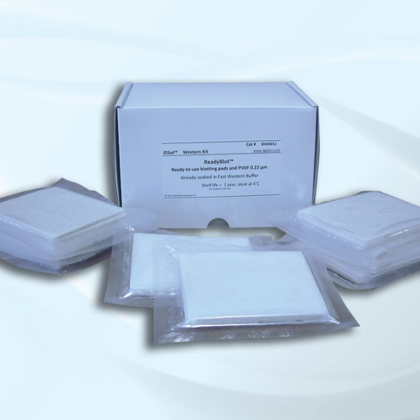 FastPADS High-Speed Blotting Pads,specification,price