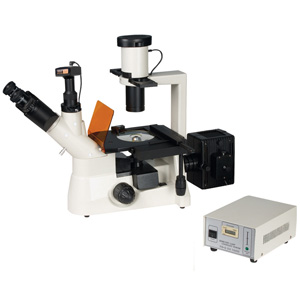 External  9.0MP USB Digital Camera Tissue Culture Biological Inversed Fluorescent Microscope