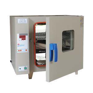 Drying Oven(300℃)