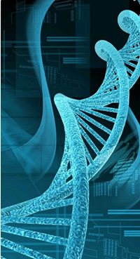 AMSBIO: Purified Genomic DNA and cDNA Products Save Research Time