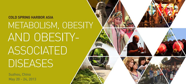 Metabolism, Obesity and Obesity-associated Diseases