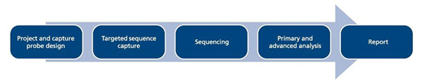 OGT Expands NGS Offering with Targeted Familial Sequencing and Analysis