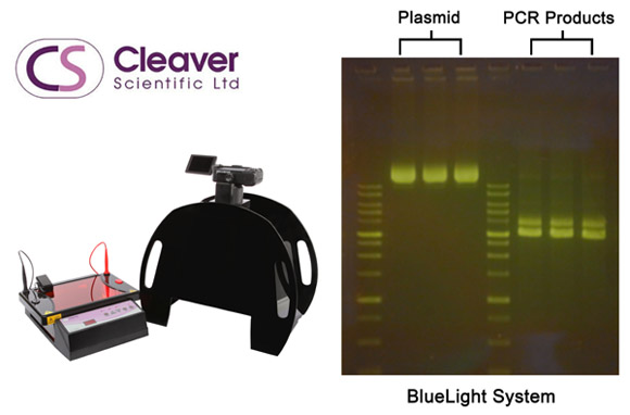 Cleaver Scientific: Safer, More Convenient DNA Electrophoresis